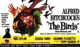 """REVIEW: """"The Birds"""""""