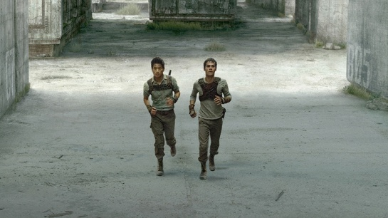 THE MAZE RUNNER Minho (Ki Hong Lee, left) and Thomas (Dylan O'Brien, right) search for a way out of the maze. TM and © 2014 Twentieth Century Fox Film Corporation. All Rights Reserved. Not for sale or duplication.