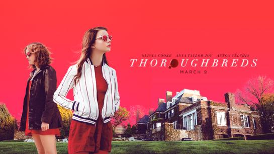 ThorBIG poster